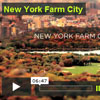 Vídeo: Hortas Urbanas «New York Farm City»