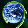 "Forum Biodiversidade: ""Silvicultura Próxima da Natureza"""