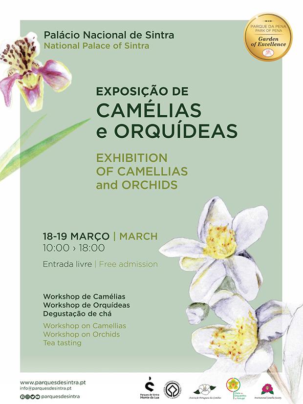 Camelias&orquideas_8