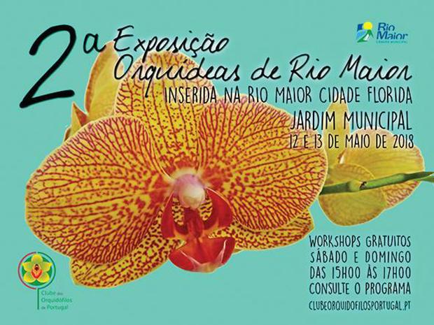 2Exposição de Orquídeas de Rio Maior