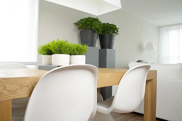 Jardins interiores uma casa verdejante portal do - Plantas interiores ...