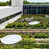 A história dos jardins horta
