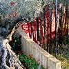 Garden Design: Os jardins contemporâneos e as cores
