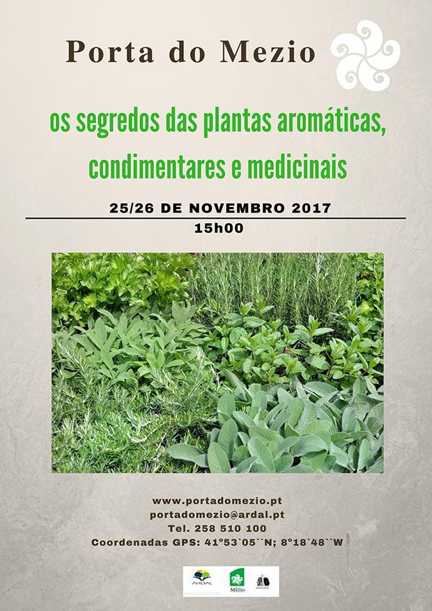 Cartaz_Plantas aromaticas