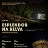 Verão com cinema ao ar livre e agenda cheia nos parques e monumentos de Sintra