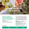 Aprender a Identificar 100 espécies no Parque Ecológico Urbano de Viana do Castelo