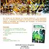 A Floresta, a Natureza e a Sociedade