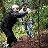 Atores José Pedro Gomes e António Machado plantam árvores na Mata Nacional do Bussaco