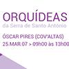 Passeio Científico: Orquídeas da Serra de Santo António