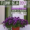 Florir Beja