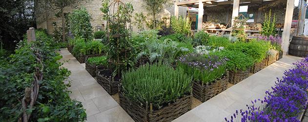Jardins arom ticos portal do - Plantas aromaticas jardin ...