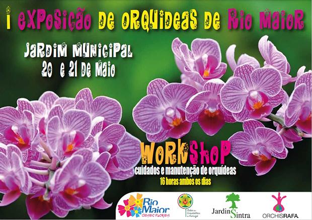 Expo Orquideas Rio Maior 2017