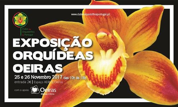 Exposicao de Orquideas de Oeiras 2017