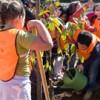 Dia da Árvore: Braga oferece milhares de plantas