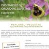 Percurso pedestre com a LPN: Observação de orquídeas silvestres