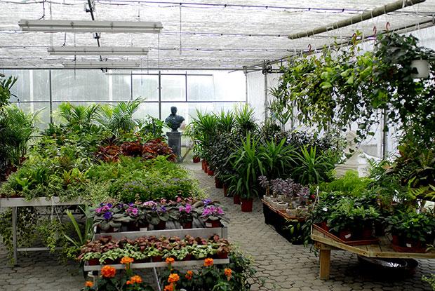 Jardins Sintra