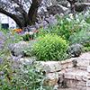 Ideias para um jardim em declive