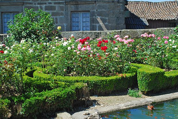 dos Pombais, onde dominam as Rosas e os Patos  Portal do Jardimcom