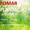 Formação pomar tradicional da plantação à colheita em Viana do Castelo