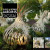Revista digital Tudo Sobre Jardins nº62 já está disponível, Assine Já!!