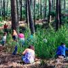 Dia Mundial da Floresta nos parques e monumentos de Sintra