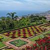 Programa de visitas de Jardins com Histórias na Madeira para 2016 já está disponível