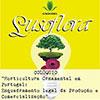 A DRAPLVT marca presença no Colóquio Horticultura Ornamental em Portugal, enquadramento legal da produção e comercialização