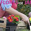 Oficina Flores de Jardim em Viana do Castelo