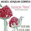 """""""Flores"""" em exposição no Museu Joaquim Correia, obra do Mestre Marinhense inaugura a 9 de abril"""