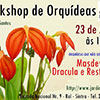 Workshop Orquídeas nos Jardins Sintra