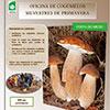 Oficina de Cogumelos Silvestres de Primavera
