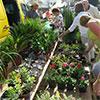 7ª Feira de Jardinagem Mediterrânica no Algarve