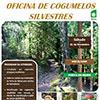 Oficina de Cogumelos Silvestres