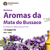 "Workshop ""Aromas da Mata"" na Mata do Buçaco"