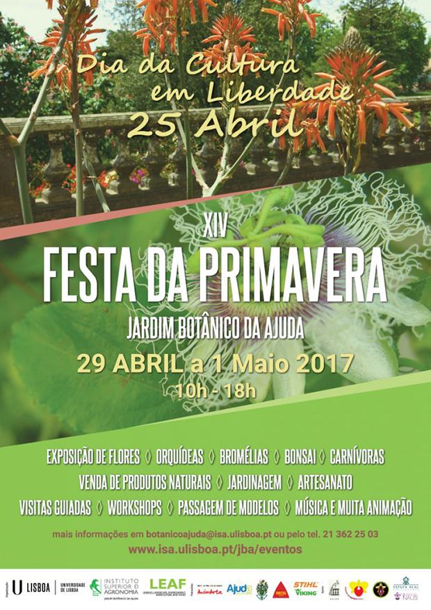 cartaz-IVFestaPrimavera_Cartaz