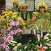 Madeira: Festa da Flor vai decorar o Funchal novamente