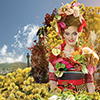 Festa da Flor da Madeira de 9 a 15 de Maio