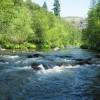 """Conferência """"Gestão e Conservação de Habitats e Flora Associada"""""""