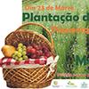 Dia Mundial da Floresta – Plantação de Árvores e Piquenique Ecológico