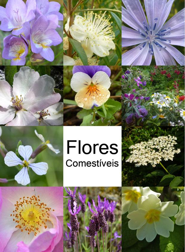 mosaico_flores_comestiveis_3