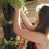 Herb Pack os vasos ideais para o seu jardim vertical!