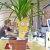 Dicas: Plantas no escritório