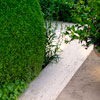 Garden design; topiária nos jardins contemporâneos