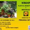 Workshop Plantas Aromáticas e Medicinais em Évora